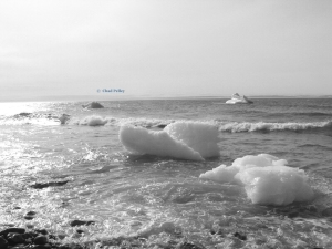 Iceberg Washing Ashore Black and White
