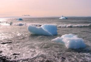 Iceberg Washing Ashore