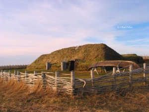 L'anse Aux Meadows with Fence