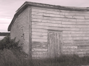 Shed, Old Shoppe