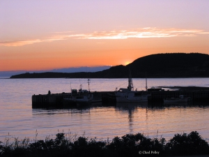 Rocky Harbour Sunset